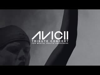 Avicii tribute concert in loving memory of tim bergling ()