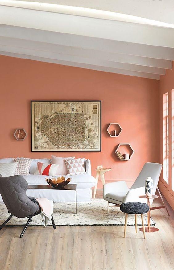 Серо-коралловый цвет в интерьере: фото сочетаний