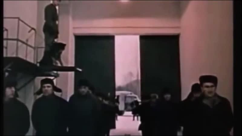 В ДОРИН и А Воробей за кадром ГОЛУБИ монтаж НЕЛИКС МУРАВЧИК