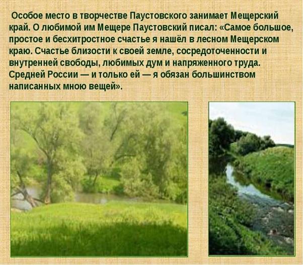 Книгопутешествие по творчеству К. Паустовского «Книга нам откроет дверь в мир растений и зверей»., изображение №2