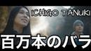 「日本語とロシア語」ICHIGO TANUKI 百万本のバラ