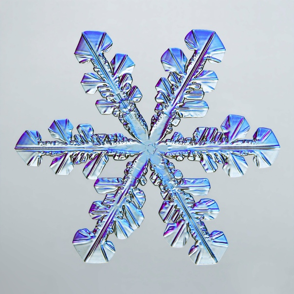Снежинка под микроскопом, 4x