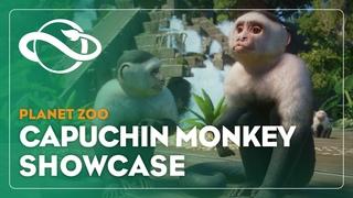 Planet Zoo | Capuchin Monkey Showcase