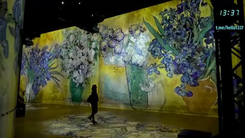 Большая проекционная выставка посвящённая художнику Винсенту Ван Гогу и его работам