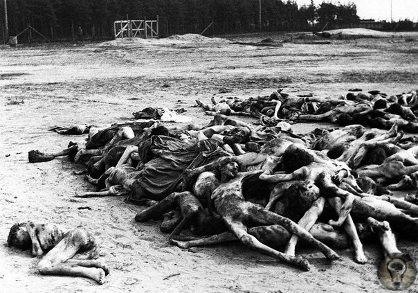 Большой китайский голод, 1949 год.