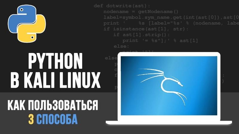 Python в Kali Linux - 3 способа КАК написать программу
