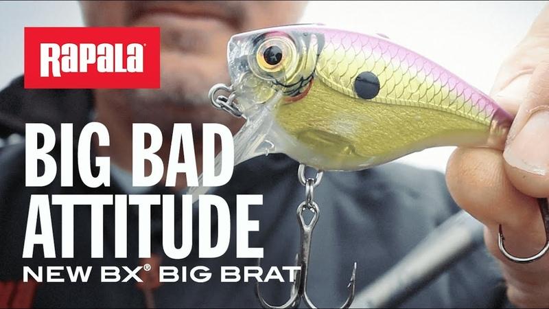 Ready for a fight NEW BX® Big Brat | Rapala®