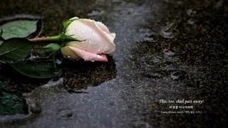 [ 2h Repeat ] 오펜바흐(Offenbach) _ 쟈크린의 눈물(Jacqueline's Tears)ㅣ사색ㅣ휴식ㅣ독서 ㅣ백색소음ㅣ