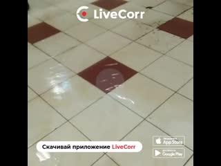Потоп в аэропорту Шереметьево