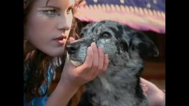 Собака по имени Снобз 18 я серия