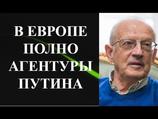 Андрей Пионтковский В ЕВРОПЕ ПОЛНО АГЕНТУРЫ ПУТИНА