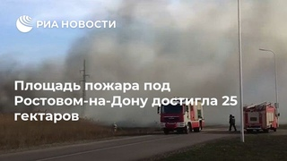 Площадь пожара под Ростовом-на-Дону достигла 25 гектаров