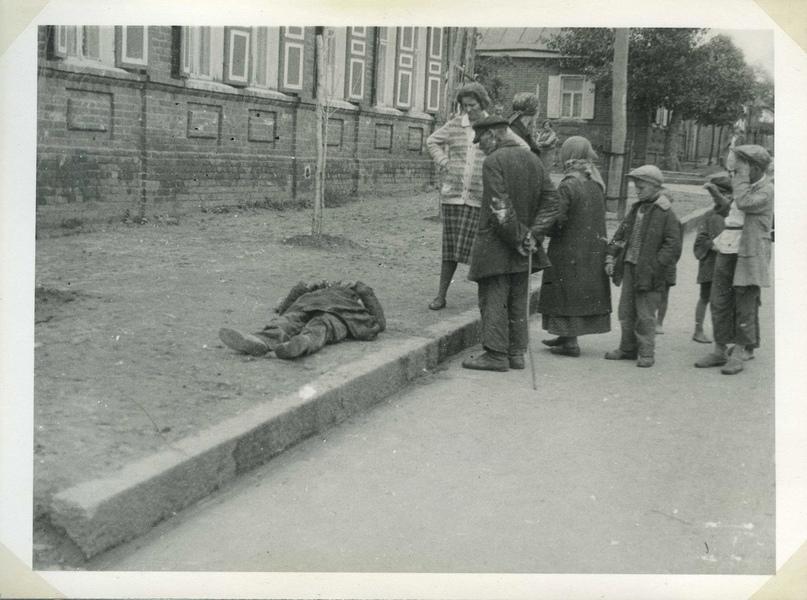 Белорусский «голодомор», изображение №78