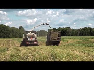 """Сельхозживотные в этом сезоне будут обеспечены достаточной кормовой базой // """"Новости 49"""""""