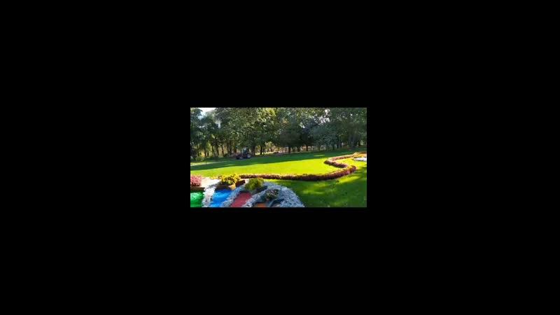 клип в Александровском саду mp4