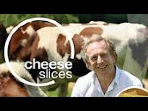 Вкус сыра Греция Фета пища богов