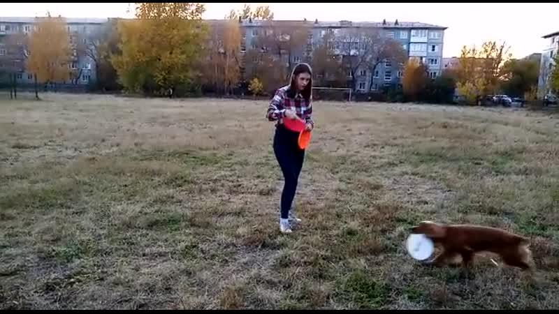 Пилипенко Виктория и РОС Мия 4 задание средние