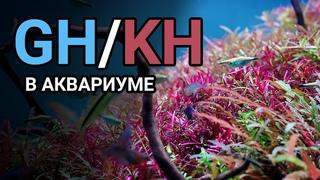 Жесткость воды в аквариуме GH и KH. Как понизить и повысить общую и карбонатную жесткость.