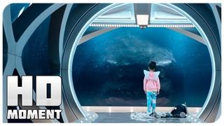 Мегалодон напал на подводную базу - Мег: Монстр глубины (2018) - Момент из фильма