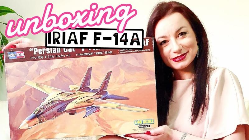 IRIAF F-14A Tomcat Persian Cat 148 Hobby Boss model kit unboxing