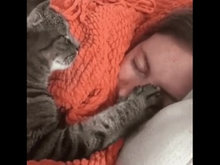 Спи хозяйка, баю-бай<br />Я с тобою полежу.<br />Свои глазки закрывай,<br />А на работу разбужу.<br /><br />Добрых снов 😴