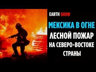 В Мексики продолжает полыхать лесной пожар 2 апреля 2021 EARTH SHOW