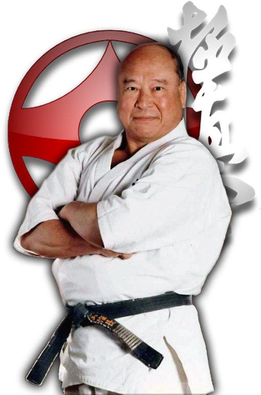 Кекусинкай карате Масутацу Оямы направления стиля