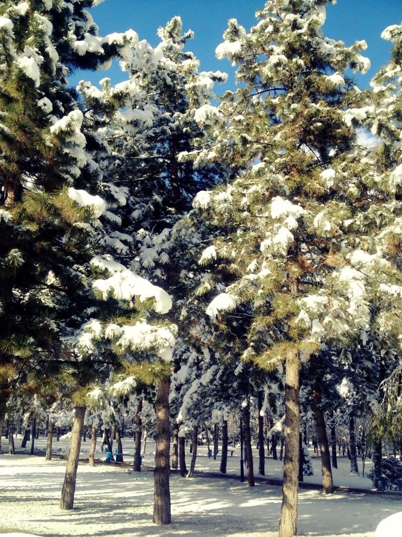 фото из альбома Аруны Мухаметовой №4