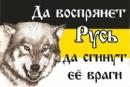 Петренко Андрей      44