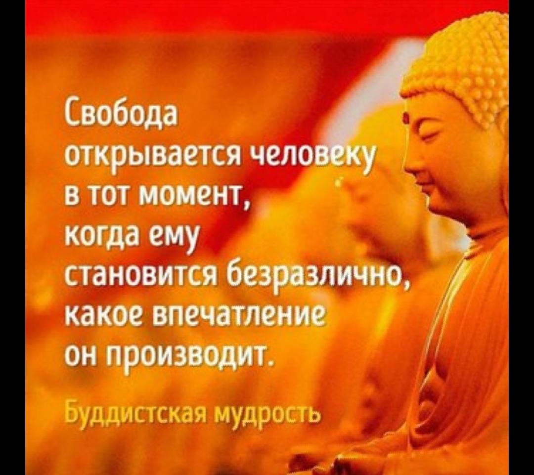фото из альбома Ольги Беркут №3