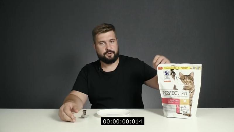 Perfect Fit сухой корм для кошек.Видео обзор корма Перфект Фит.