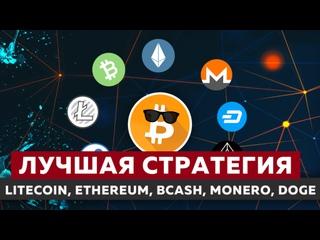 investir em ethereum ou litecoin iq option gerente de conta maged zaki