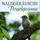 Llewellyn - Пение птиц для исцеления: звуки природы