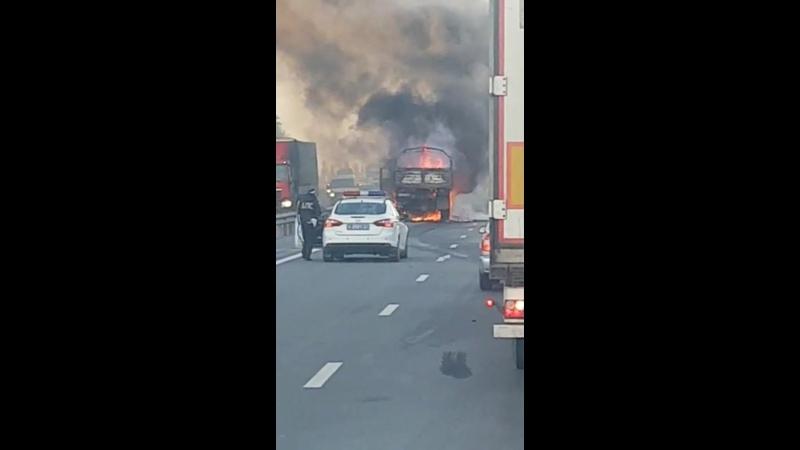 На трассе М4 «Дон» в ДТП погибла девушка из Каменска