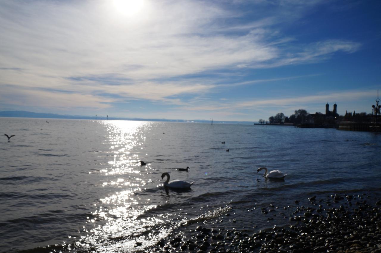 Фридрихсхафен и виды Боденского озера