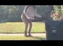 Mia Khalifa Dog Poop Mask Footage FULL ANALYSIS