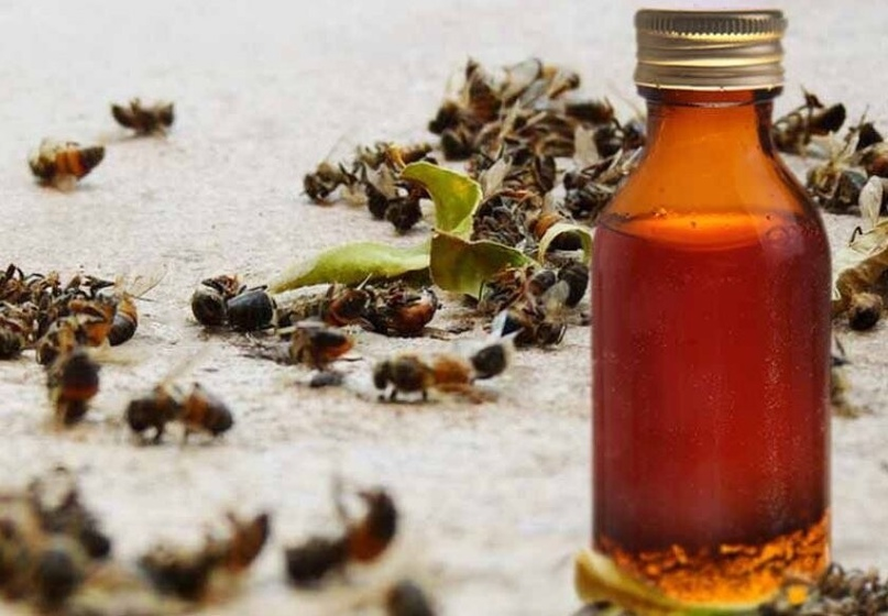 🌿🌿🌿Чудо Настойка пчелиного подмора🌿🌿🌿