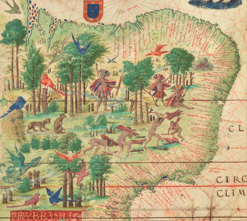 Бразилия. Фрагмент карты из атласа Миллера (1519)