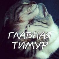 ТимурТимурович