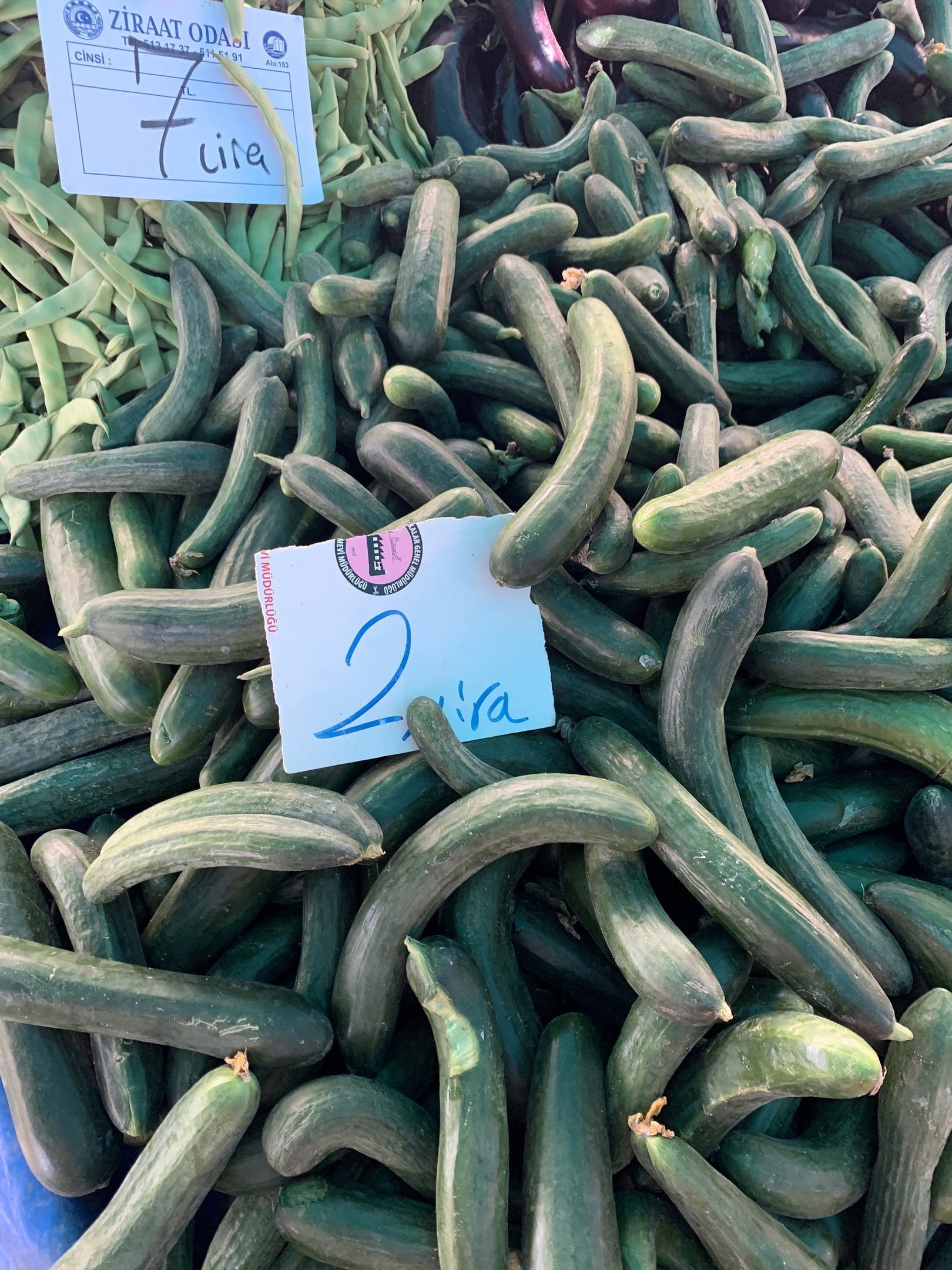 Цены в Турции на овощи и фрукты. Фото