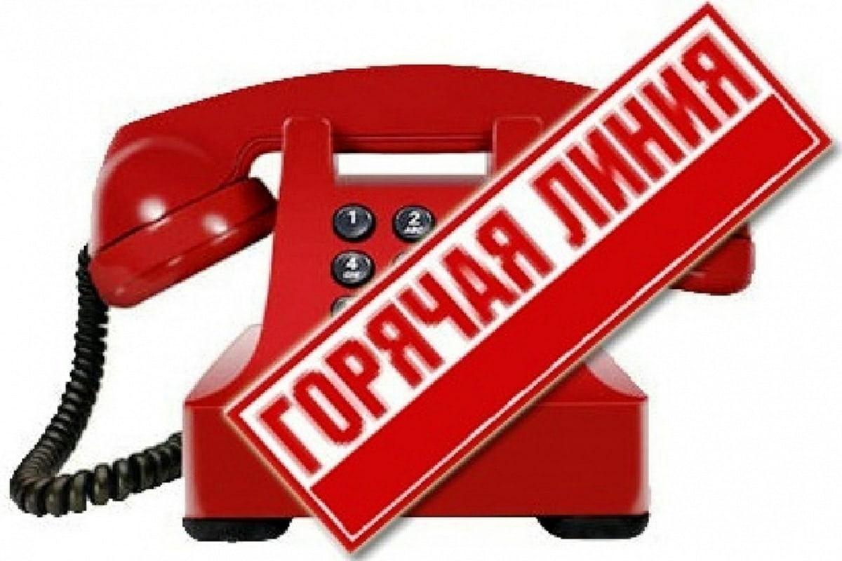 Телефон «горячей линии»