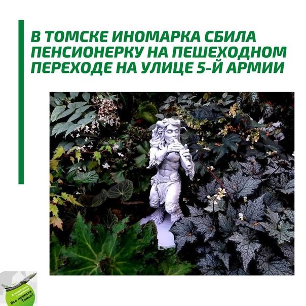 В субтропической оранжерее Ботсада Томского госуни...