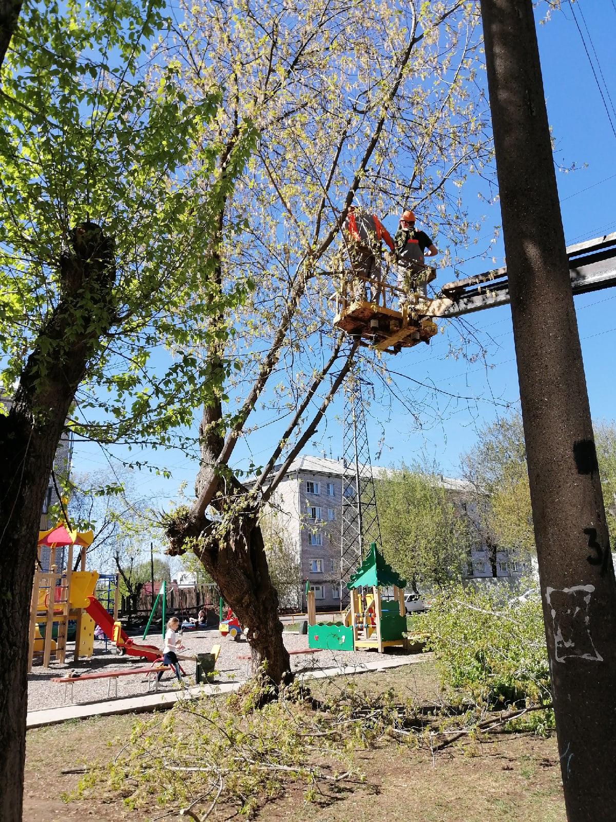 Спил аварийных деревьев по заявке Октябрьский проспект
