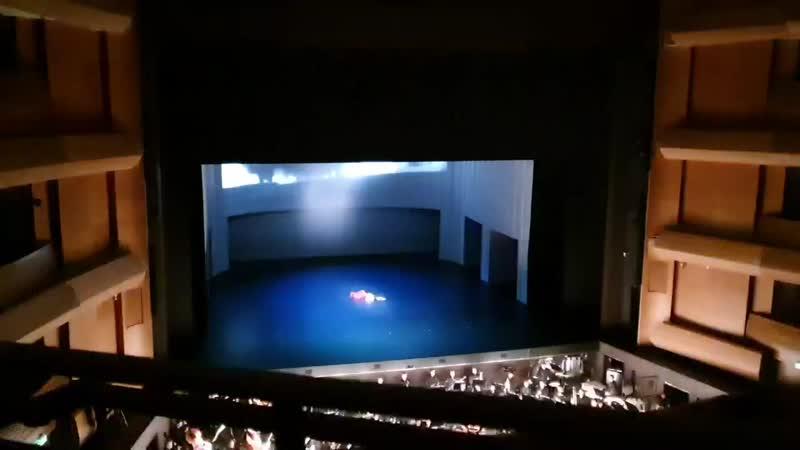 22 11 2020 Мариинский театр Анна Каренина