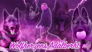 Wolfherzen's Adalberht GSD Dog Schutzhund IPO Training Obedience Short Clip
