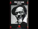 Peg Leg Sam w/ Louisiana Red Joshua Fit The Battle Of Jericho (1975)