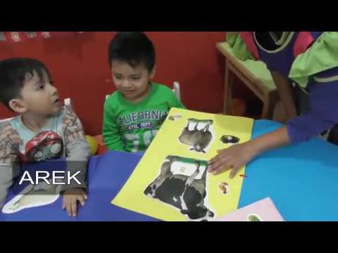 LAAB SHOW HAPPY CHILDREN mi proyecto 2019 (aula ositos)