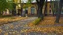 Прогулка по Педиатрическому университету осенью