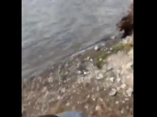 А вот и еще один рыбак