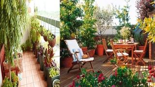Best Apartment Balcony garden Design ideas | Small Balcony Gardening